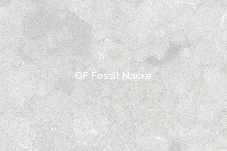 QF Fossil Nacre